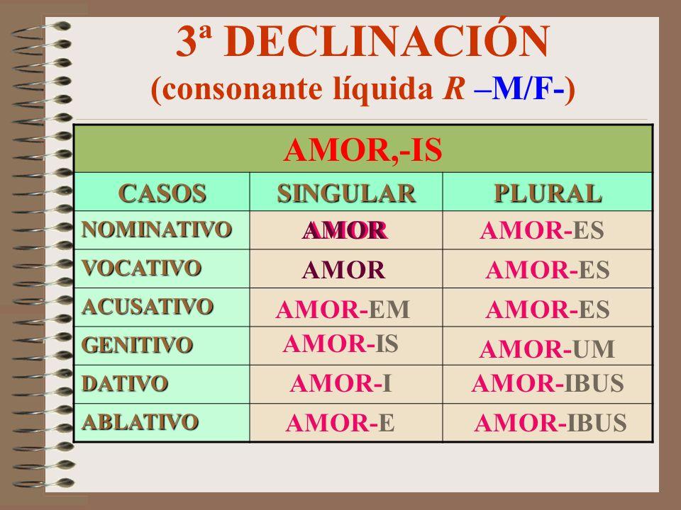 3ª DECLINACIÓN (consonante oclusiva dental –N-) CAPUT, -ITIS CASOSSINGULARPLURAL NOMINATIVO VOCATIVO ACUSATIVO GENITIVO DATIVO ABLATIVO CAPUT CAPIT-E