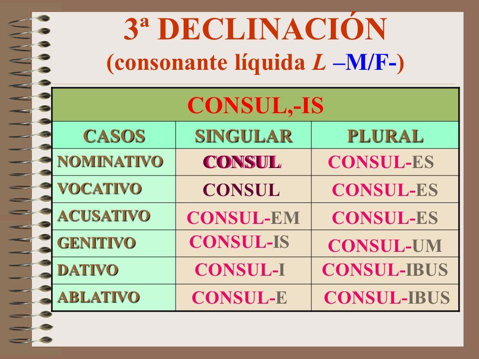 3ª DECLINACIÓN (consonante líquida R –M/F-) AMOR,-IS CASOSSINGULARPLURAL NOMINATIVO VOCATIVO ACUSATIVO GENITIVO DATIVO ABLATIVO AMOR-EM AMOR AMOR-E AM