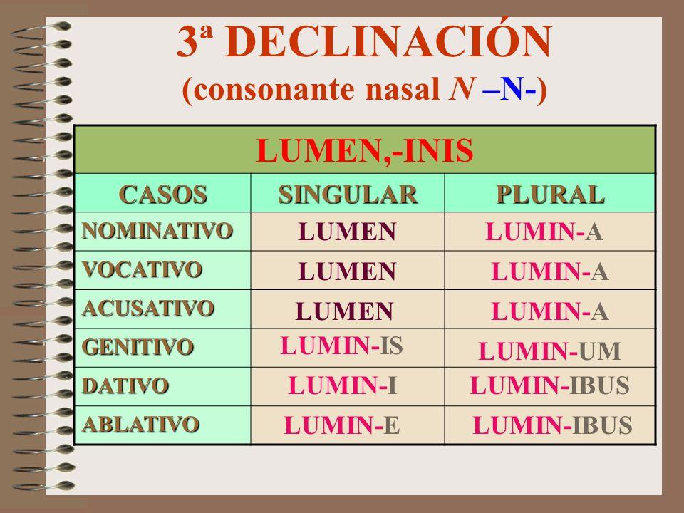 3ª DECLINACIÓN (consonante nasal N –M/F-) LEO,-ONIS CASOSSINGULARPLURAL NOMINATIVO VOCATIVO ACUSATIVO GENITIVO DATIVO ABLATIVO LEON-EM LEON LEON-E LEO
