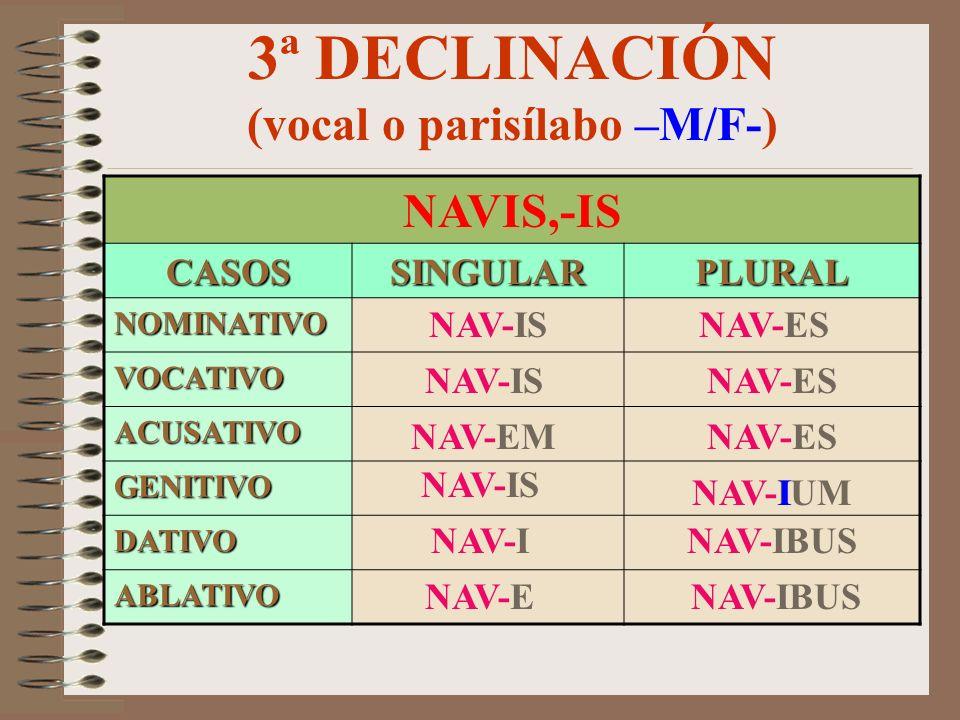 3ª DECLINACIÓN (consonante silbante –N-) TEMPUS,-ORIS CASOSSINGULARPLURAL NOMINATIVO VOCATIVO ACUSATIVO GENITIVO DATIVO ABLATIVO TEMPUS TEMPOS-E TEMPO
