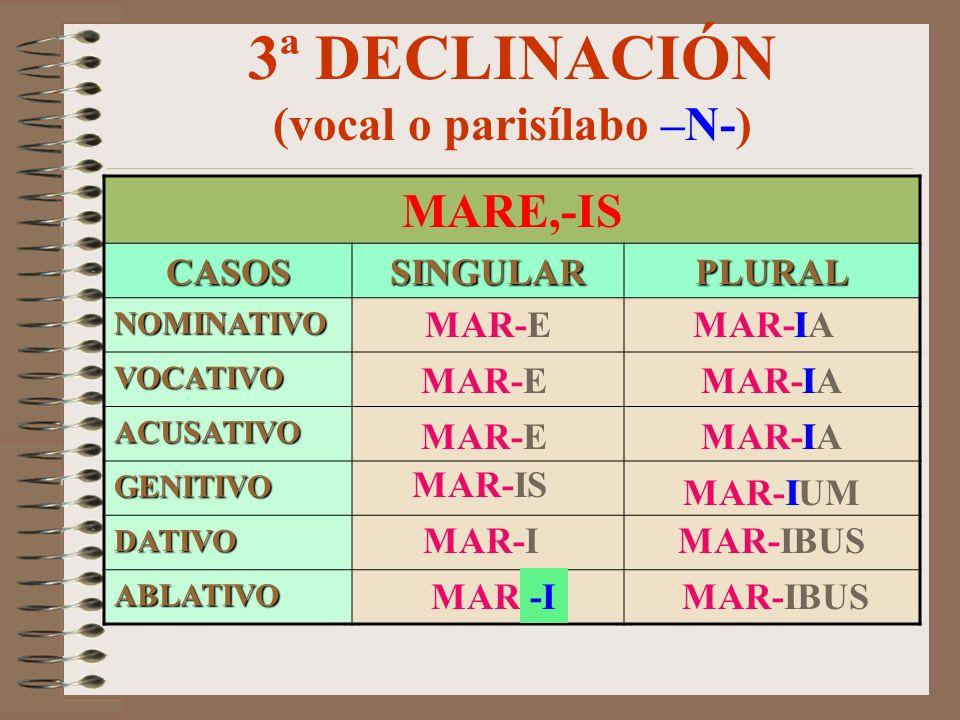 3ª DECLINACIÓN (vocal o parisílabo –M/F-) NAVIS,-IS CASOSSINGULARPLURAL NOMINATIVO VOCATIVO ACUSATIVO GENITIVO DATIVO ABLATIVO NAV-EM NAV-IS NAV-E NAV