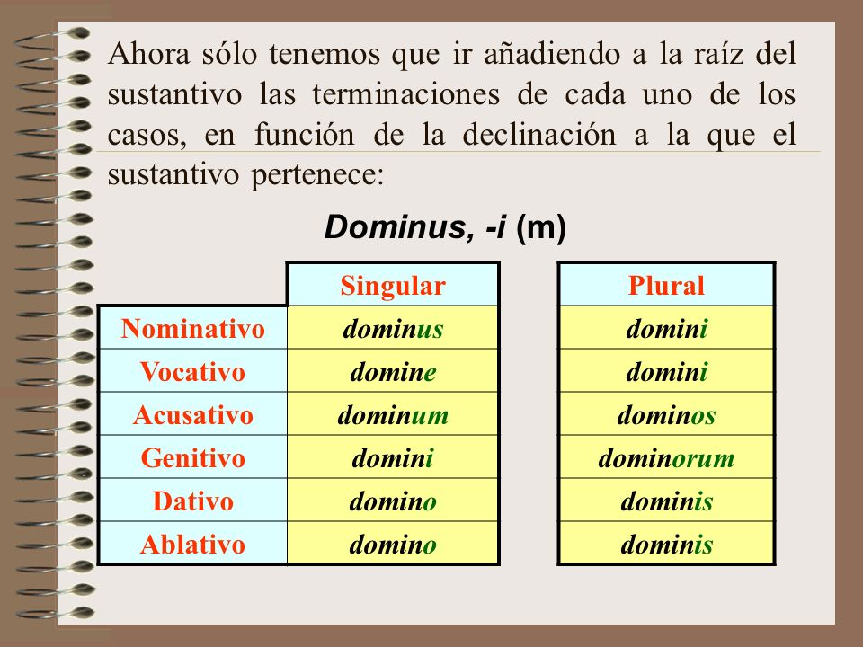 Una vez determinada la declinación, extraemos la raíz del sustantivo, que es donde vamos a añadir las desinencias casuales. La raíz del sustantivo es