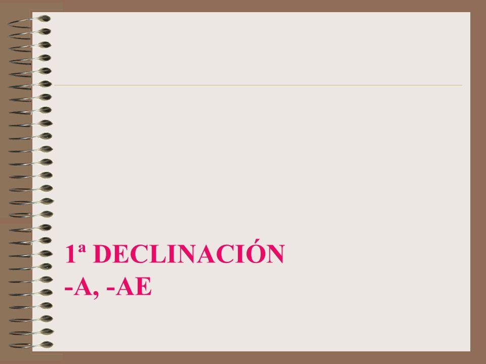 3ª DECLINACIÓN (consonante líquida L –M/F-) CONSUL,-IS CASOSSINGULARPLURAL NOMINATIVO VOCATIVO ACUSATIVO GENITIVO DATIVO ABLATIVO CONSUL-EM CONSUL CONSUL-E CONSUL-ES CONSUL-I CONSUL-IS CONSUL-IBUS CONSUL-UM CONSUL-ES CONSUL