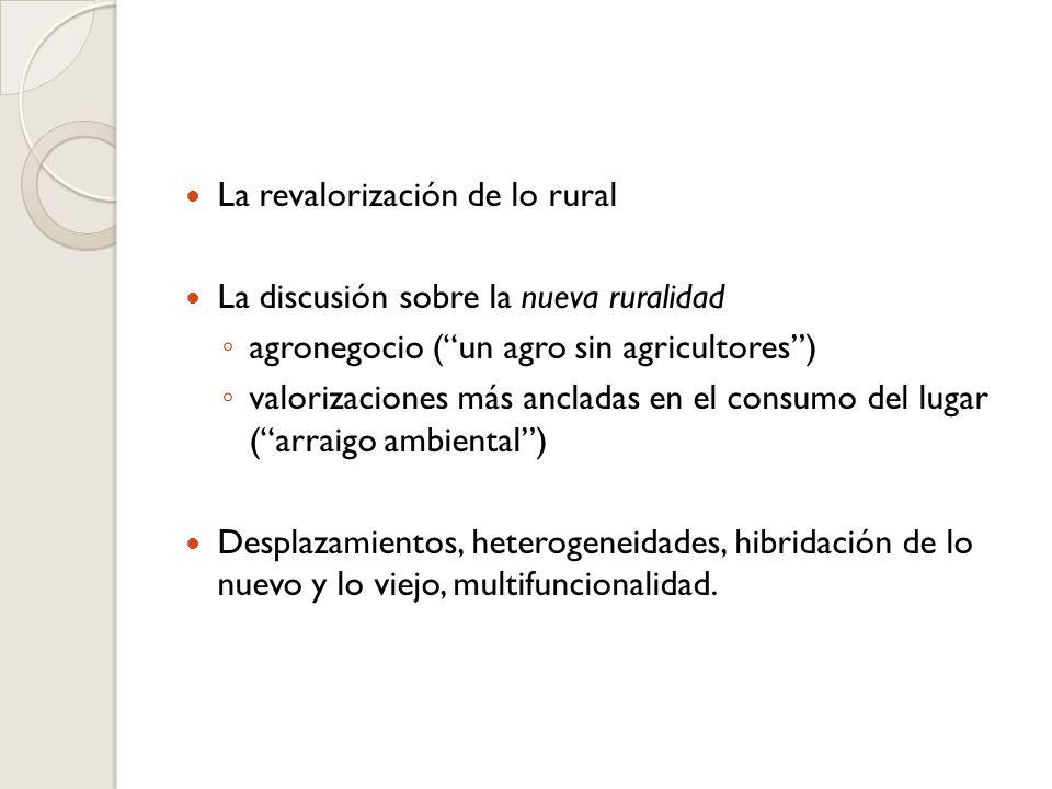 La revalorización de lo rural La discusión sobre la nueva ruralidad agronegocio (un agro sin agricultores) valorizaciones más ancladas en el consumo del lugar (arraigo ambiental) Desplazamientos, heterogeneidades, hibridación de lo nuevo y lo viejo, multifuncionalidad.