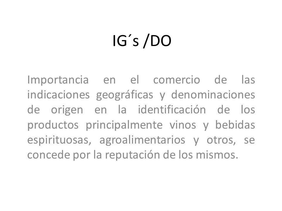 IG´s /DO Importancia en el comercio de las indicaciones geográficas y denominaciones de origen en la identificación de los productos principalmente vi