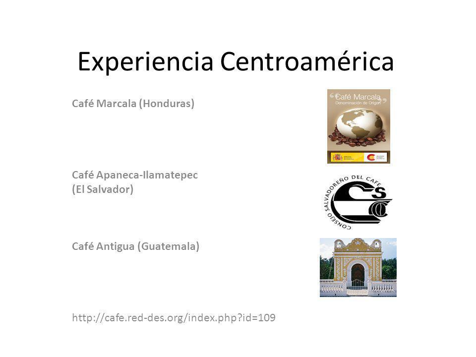 Experiencia Centroamérica Café Marcala (Honduras) Café Apaneca-Ilamatepec (El Salvador) Café Antigua (Guatemala) http://cafe.red-des.org/index.php?id=