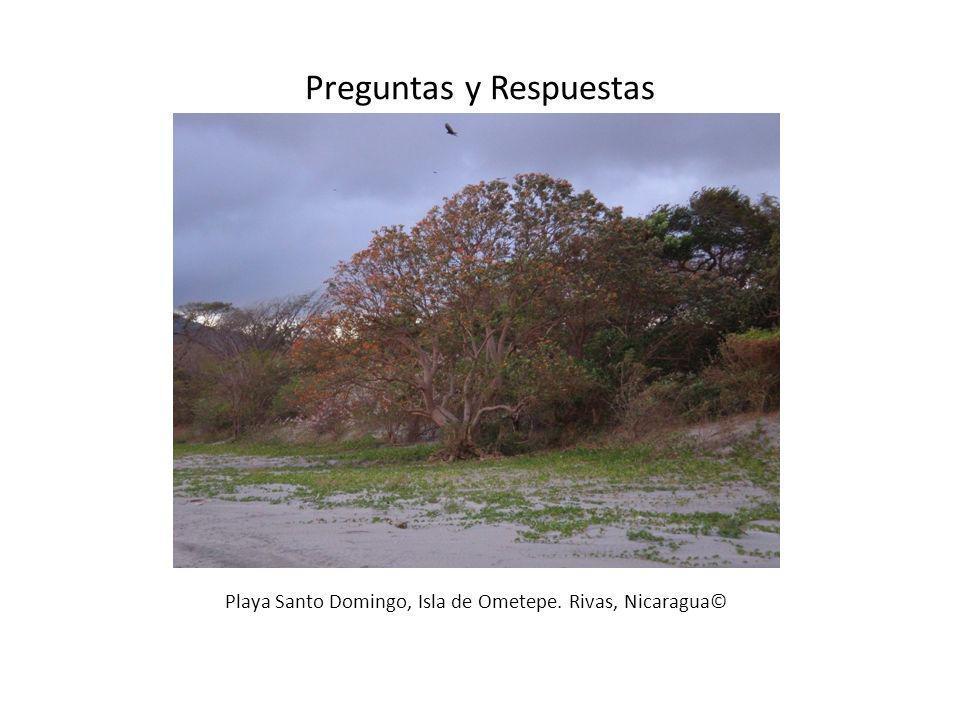 Playa Santo Domingo, Isla de Ometepe. Rivas, Nicaragua© Preguntas y Respuestas