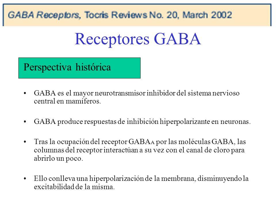 Receptores GABA Perspectiva histórica GABA es el mayor neurotransmisor inhibidor del sistema nervioso central en mamíferos. GABA produce respuestas de