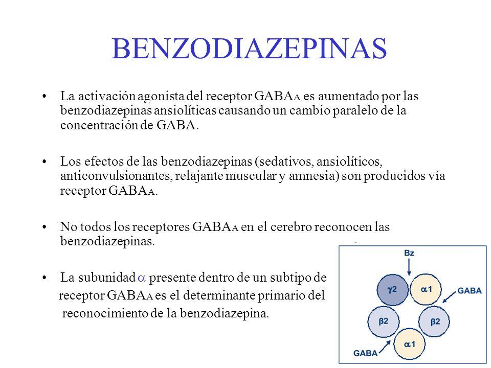 BENZODIAZEPINAS La activación agonista del receptor GABA A es aumentado por las benzodiazepinas ansiolíticas causando un cambio paralelo de la concent