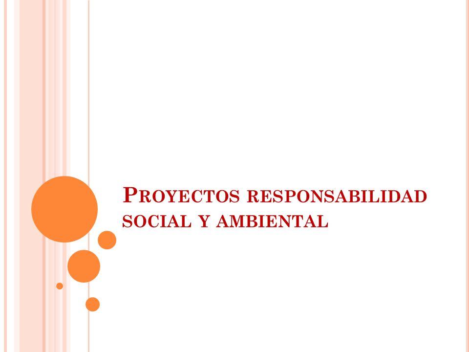 P ROYECTOS RESPONSABILIDAD SOCIAL Y AMBIENTAL
