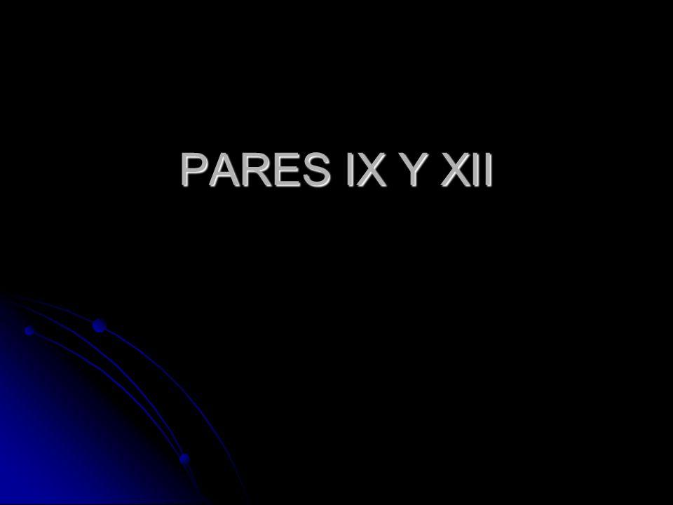 PARES IX Y XII