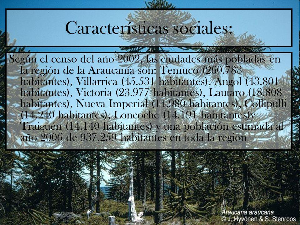 Características sociales: Según el censo del año 2002, las ciudades más pobladas en la región de la Araucanía son: Temuco (260.783 habitantes), Villar