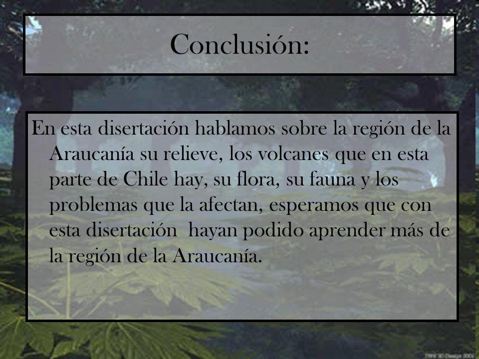 Conclusión: En esta disertación hablamos sobre la región de la Araucanía su relieve, los volcanes que en esta parte de Chile hay, su flora, su fauna y