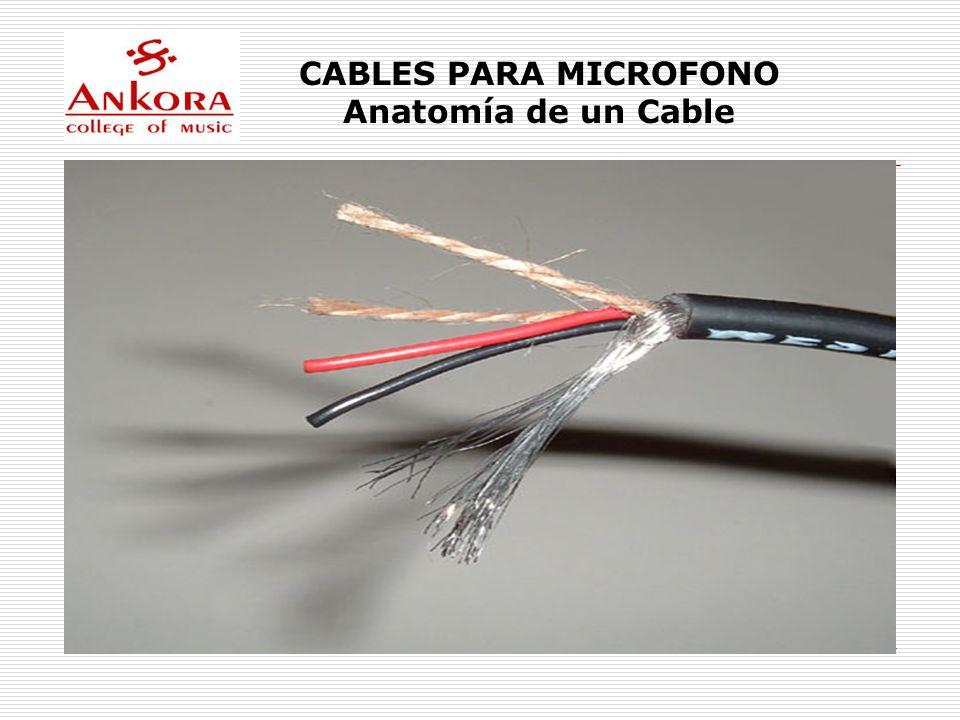 CABLES PARA MICROFONO En un estudio se puede muchos metros de cables que Atraviesan el recinto y que son susceptibles a interferencias como: Señales de RF (juguetes de Control Remoto) Balastras de lamparas fluorescentes Radio C.B.