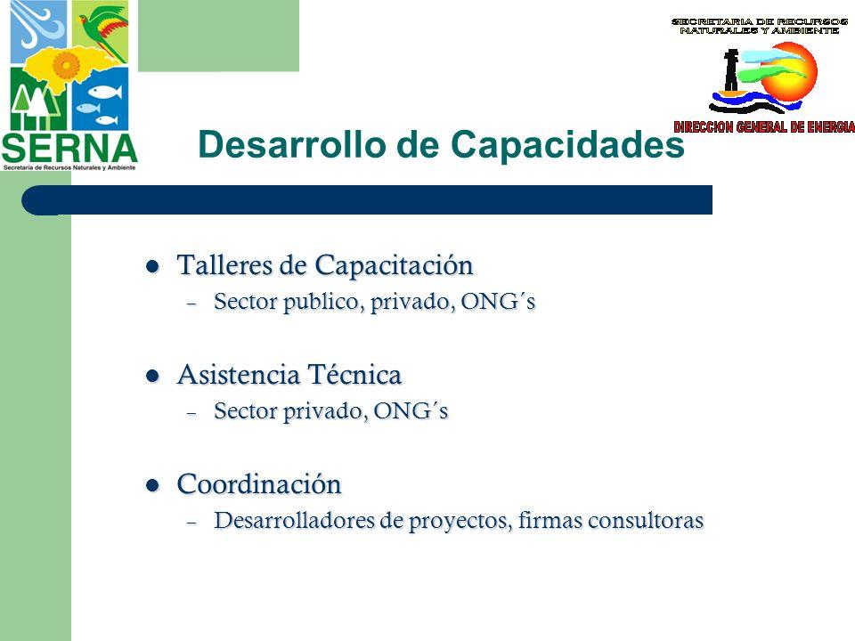 Desarrollo de Capacidades Talleres de Capacitación Talleres de Capacitación – Sector publico, privado, ONG´s Asistencia Técnica Asistencia Técnica – S