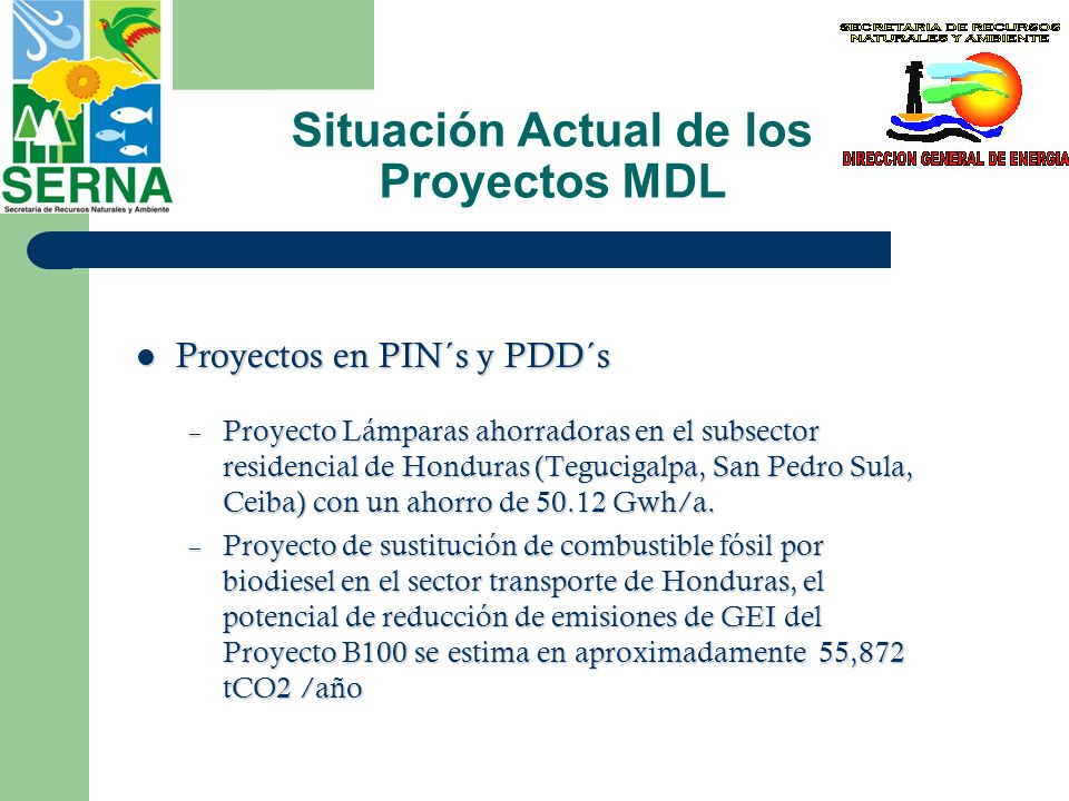 Situación Actual de los Proyectos MDL Proyectos en PIN´s y PDD´s Proyectos en PIN´s y PDD´s – Pico Bonito (reforestación) con un total de 1109,705 ton CO2 en 3 periodos de 7 años en 5,000 ha.