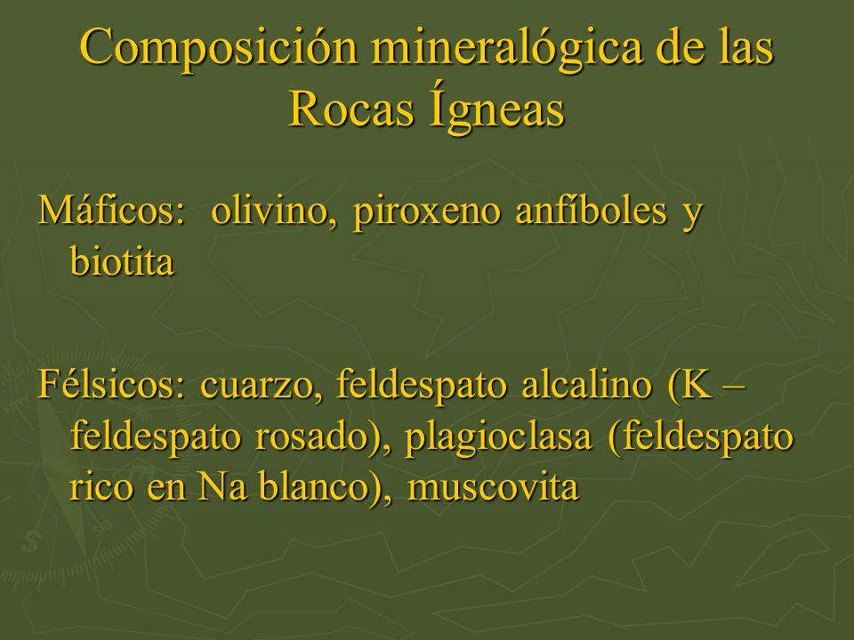 Composición mineralógica de las Rocas Ígneas Máficos: olivino, piroxeno anfíboles y biotita Félsicos: cuarzo, feldespato alcalino (K – feldespato rosa