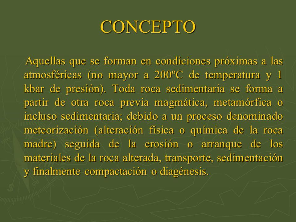 CONCEPTO Aquellas que se forman en condiciones próximas a las atmosféricas (no mayor a 200ºC de temperatura y 1 kbar de presión). Toda roca sedimentar