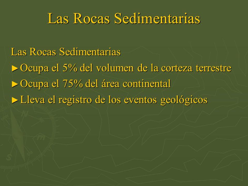 Las Rocas Sedimentarias Ocupa el 5% del volumen de la corteza terrestre Ocupa el 5% del volumen de la corteza terrestre Ocupa el 75% del área continen