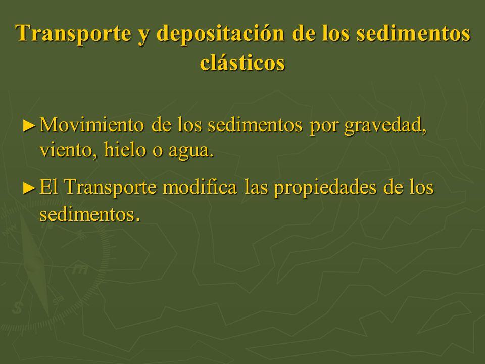 Transporte y depositación de los sedimentos clásticos Movimiento de los sedimentos por gravedad, viento, hielo o agua. Movimiento de los sedimentos po