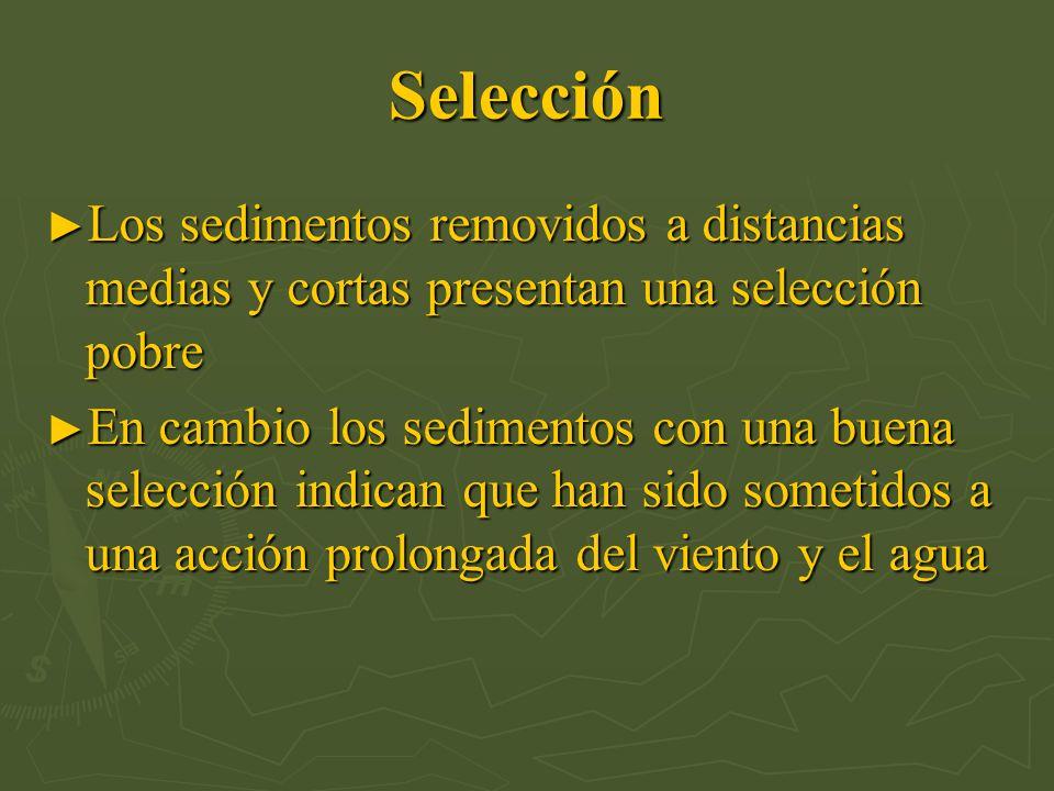 Selección Los sedimentos removidos a distancias medias y cortas presentan una selección pobre Los sedimentos removidos a distancias medias y cortas pr
