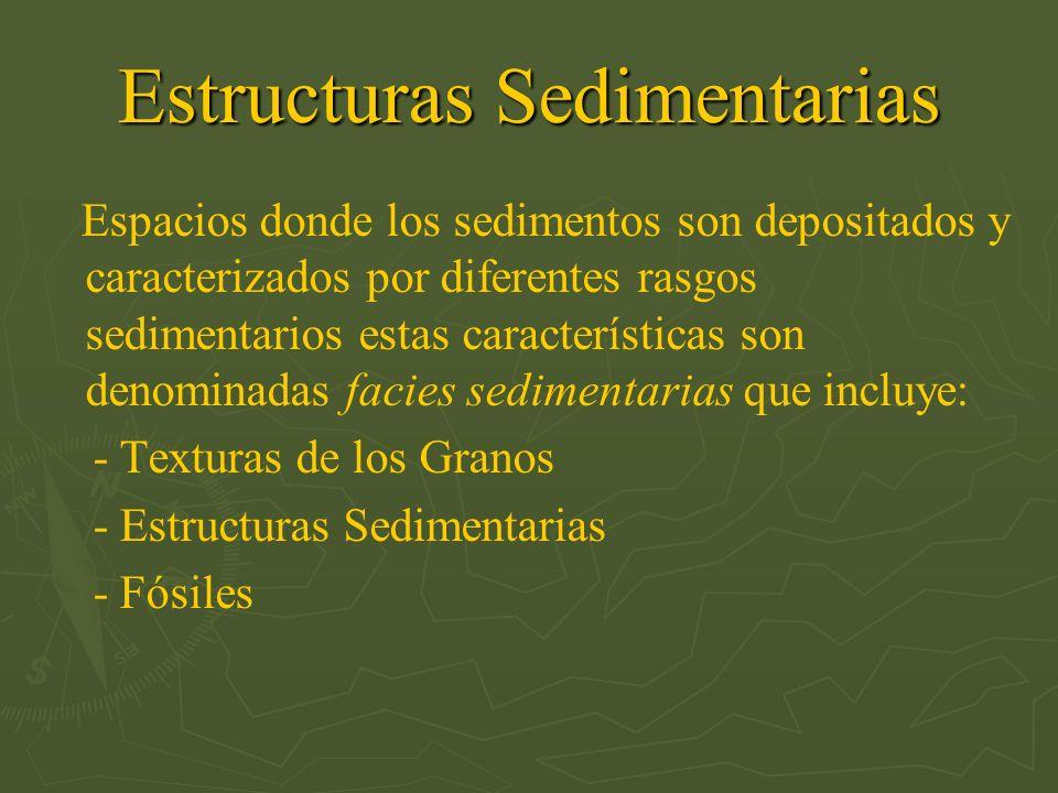 Estructuras Sedimentarias Espacios donde los sedimentos son depositados y caracterizados por diferentes rasgos sedimentarios estas características son