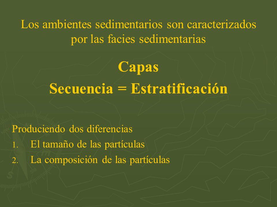 Los ambientes sedimentarios son caracterizados por las facies sedimentarias Capas Secuencia = Estratificación Produciendo dos diferencias 1. 1. El tam