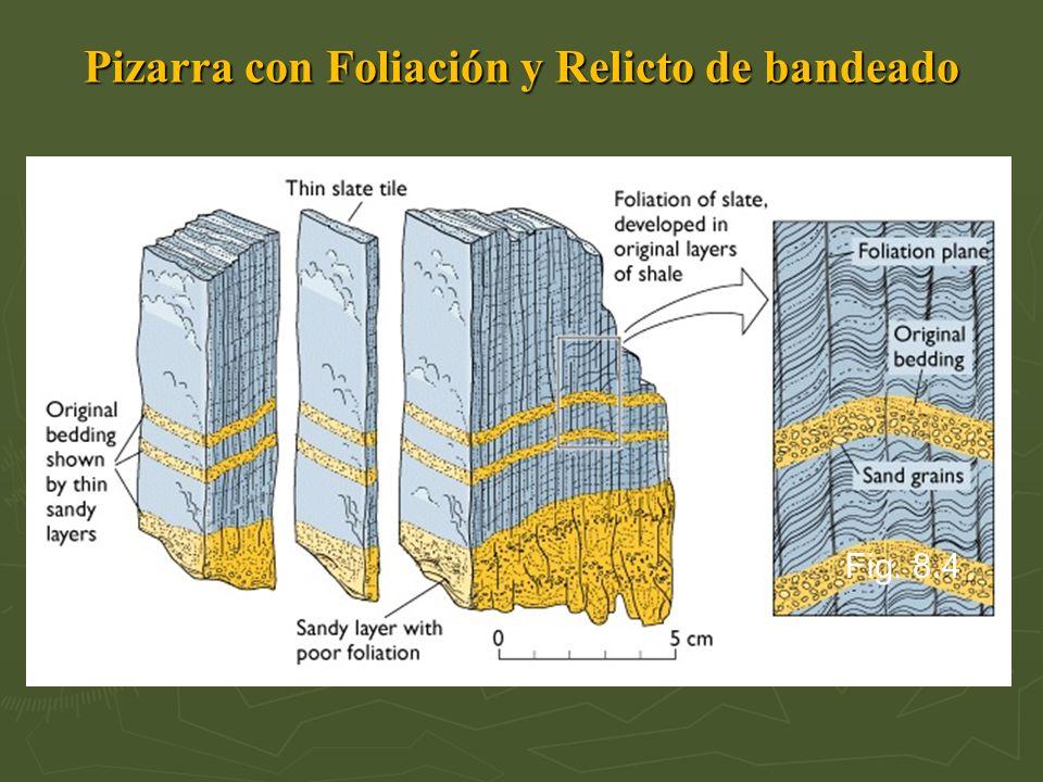 Pizarra con Foliación y Relicto de bandeado Fig. 8.4