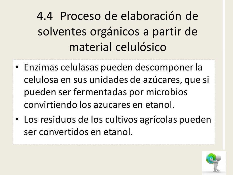 4.4Proceso de elaboración de solventes orgánicos a partir de material celulósico Enzimas celulasas pueden descomponer la celulosa en sus unidades de a