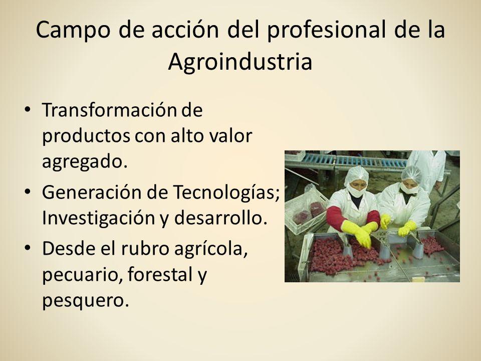 Campo de acción del profesional de la Agroindustria Transformación de productos con alto valor agregado. Generación de Tecnologías; Investigación y de