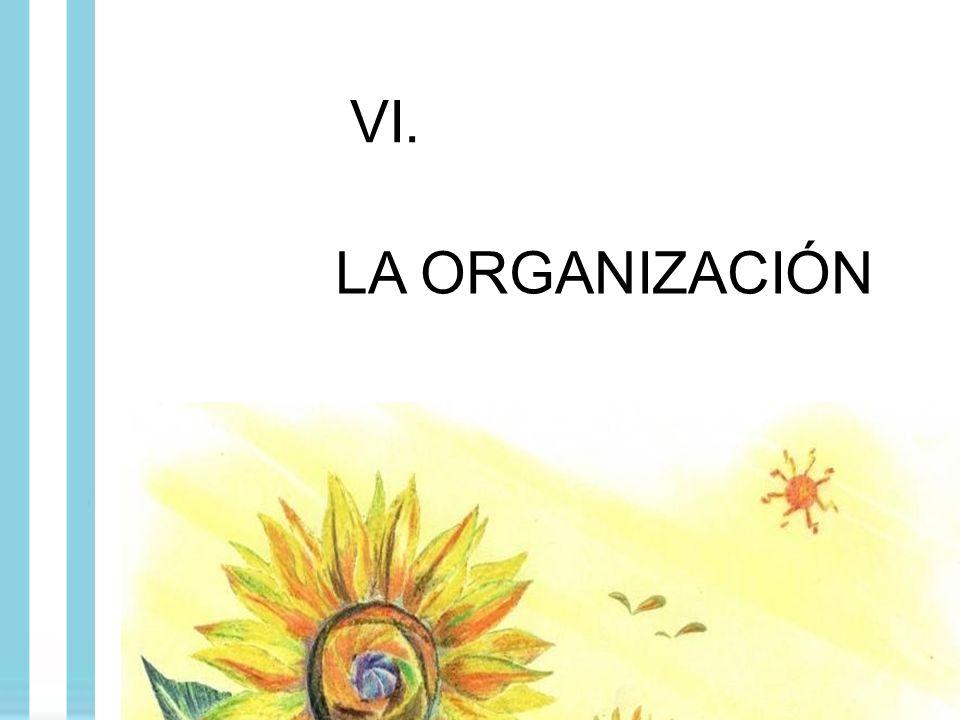 VI. LA ORGANIZACIÓN