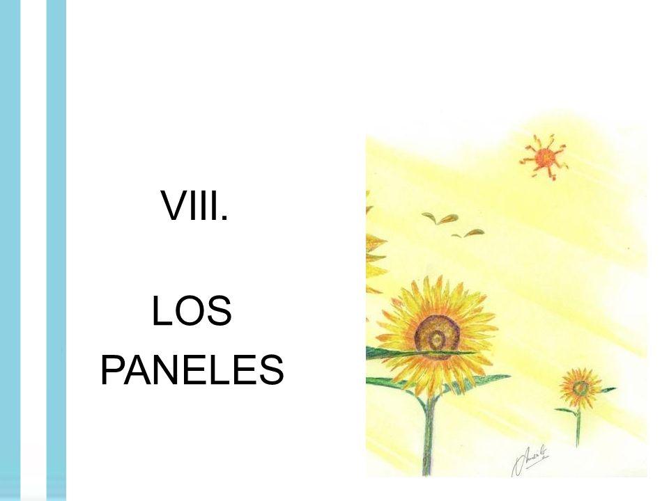 VIII. LOS PANELES