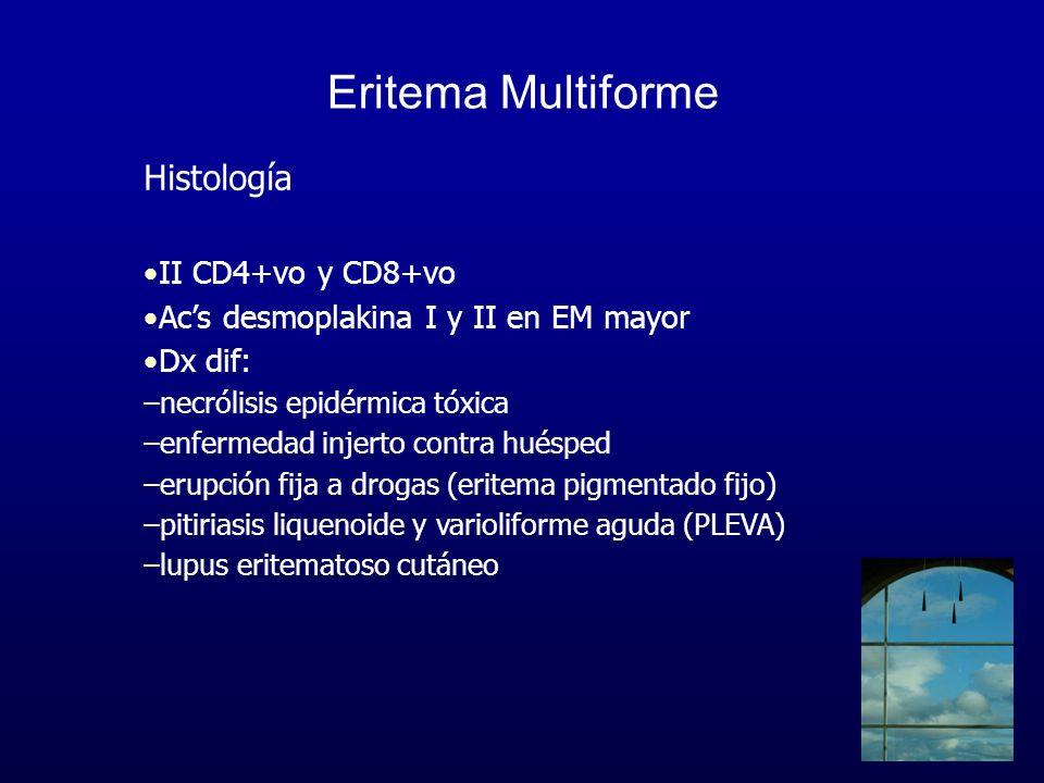 Eritema Multiforme Histología II CD4+vo y CD8+vo Acs desmoplakina I y II en EM mayor Dx dif: –necrólisis epidérmica tóxica –enfermedad injerto contra