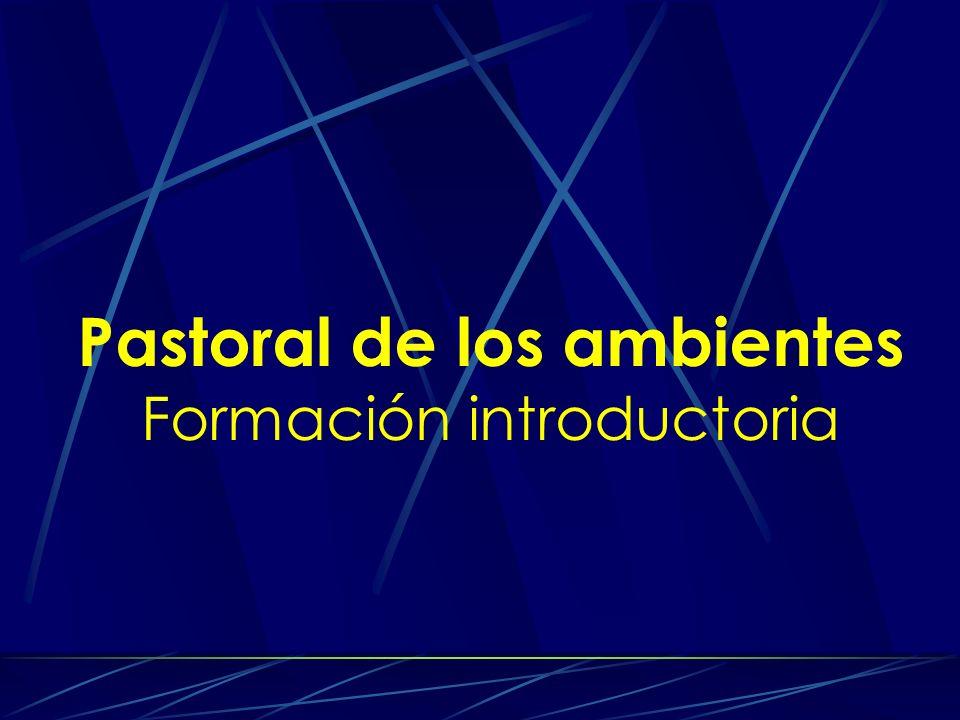 Pastoral de los ambientes Formación introductoria