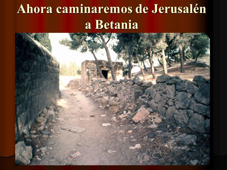 Hageo y Malaquías también están enterrados aquí