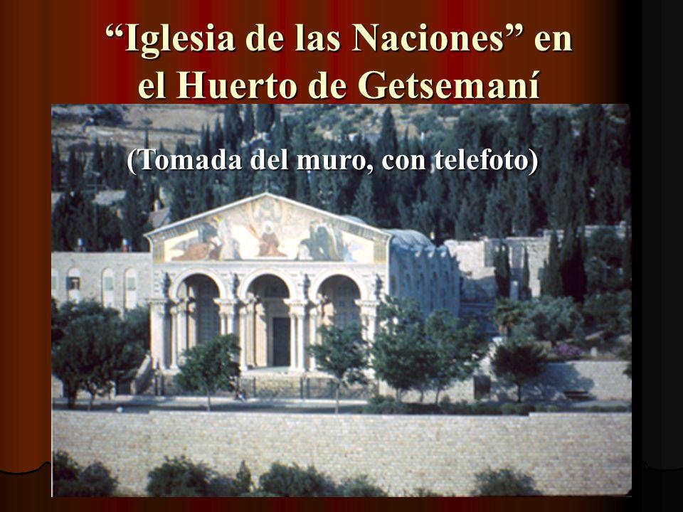 Parte del Mt. de Olivos (Foto sacada desde encima del muro de Jerusalén)