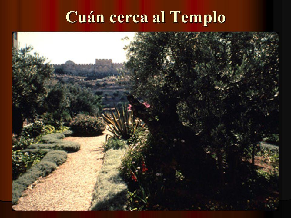En el Huerto de Getsemaní La Iglesia