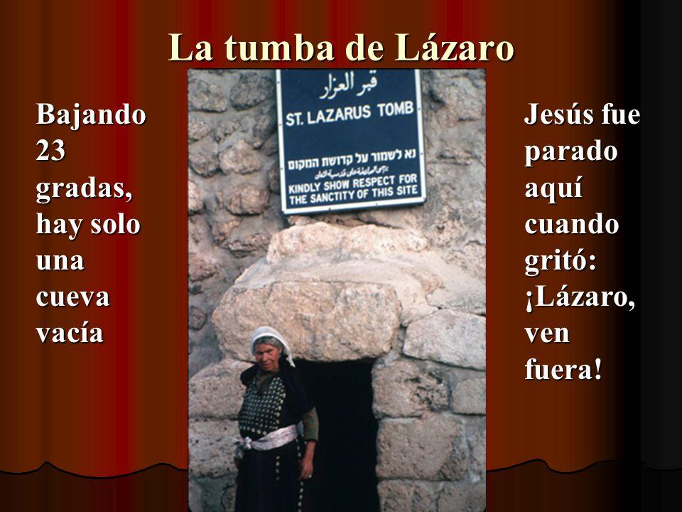 La tumba de Lázaro Bajando 23 gradas, hay solo una cueva vacía Jesús fue parado aquí cuando gritó: ¡Lázaro, ven fuera!