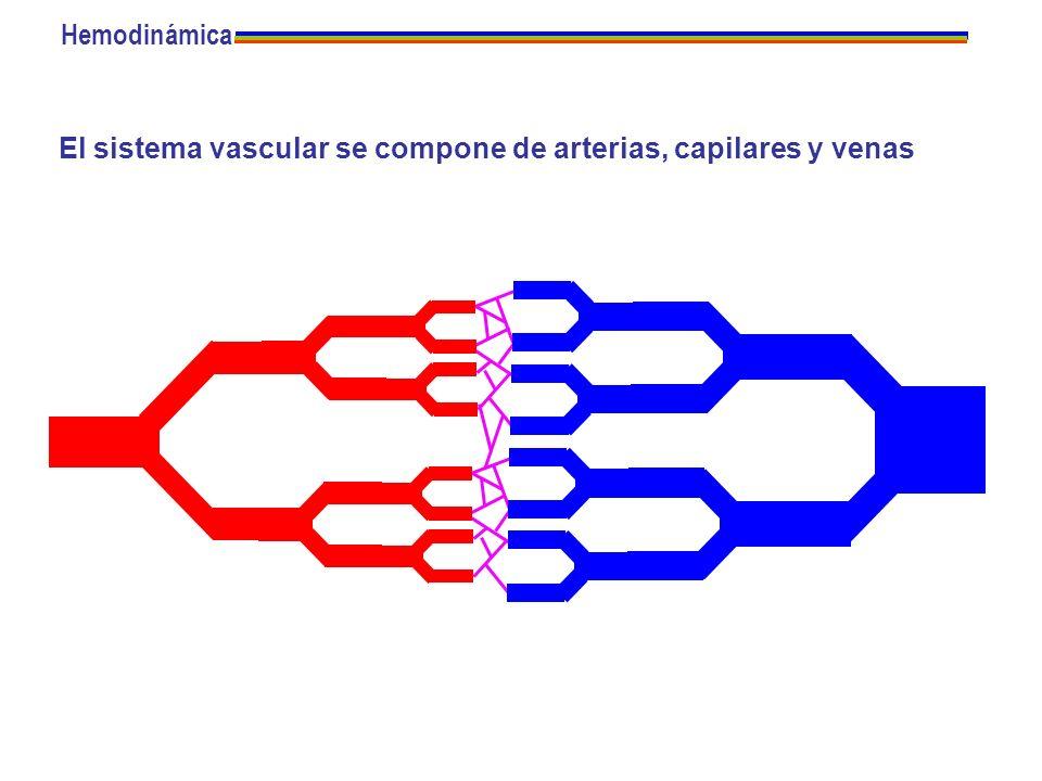 El sistema vascular se compone de arterias, capilares y venas Hemodinámica
