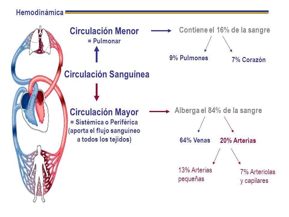 Circulación Sanguínea Circulación Menor = Pulmonar Circulación Mayor = Sistémica o Periférica (aporta el flujo sanguíneo a todos los tejidos) Alberga