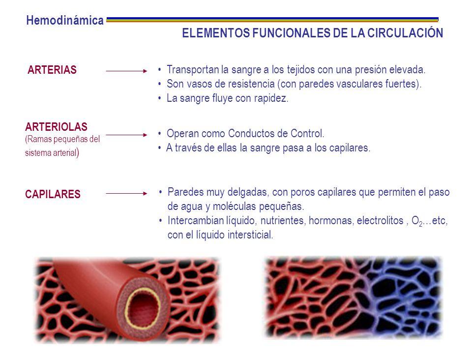 ELEMENTOS FUNCIONALES DE LA CIRCULACIÓN ARTERIAS ARTERIOLAS (Ramas pequeñas del sistema arterial ) CAPILARES Transportan la sangre a los tejidos con u