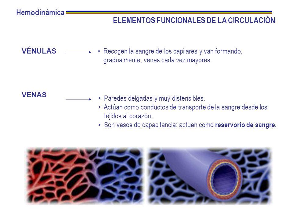 La viscosidad de la sangre depende del hematocrito P1P1 P2P2 r L Flujo = (P 1 – P 2 ) r 4 8 L = (P 1 – P 2 ) R R = r 4 8 L Hemodinámica