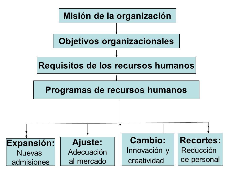 Misión de la organización Objetivos organizacionales Requisitos de los recursos humanos Programas de recursos humanos Expansión: Nuevas admisiones Aju