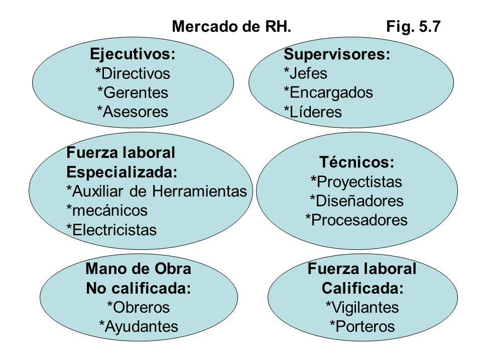 Mercado de RH. Fig. 5.7 Ejecutivos: *Directivos *Gerentes *Asesores Supervisores: *Jefes *Encargados *Líderes Fuerza laboral Especializada: *Auxiliar