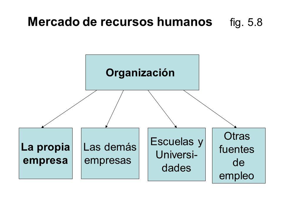 Mercado de recursos humanos fig. 5.8 Organización La propia empresa Las demás empresas Escuelas y Universi- dades Otras fuentes de empleo