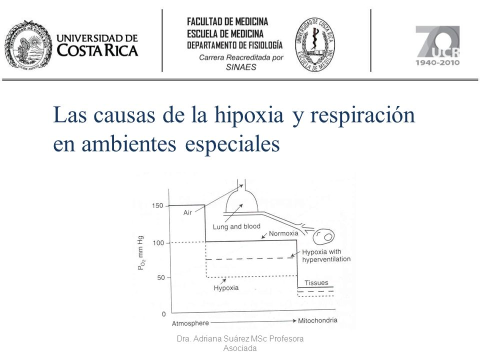 Las causas de la hipoxia y respiración en ambientes especiales Dra. Adriana Suárez MSc Profesora Asociada