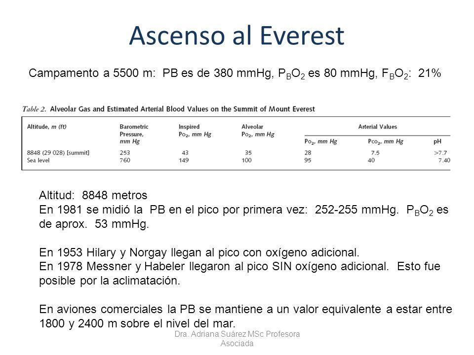 Ascenso al Everest Altitud: 8848 metros En 1981 se midió la PB en el pico por primera vez: 252-255 mmHg. P B O 2 es de aprox. 53 mmHg. En 1953 Hilary