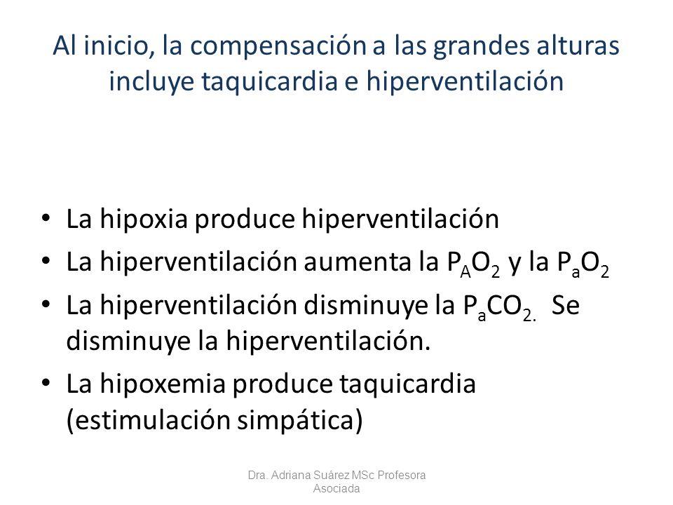 Al inicio, la compensación a las grandes alturas incluye taquicardia e hiperventilación La hipoxia produce hiperventilación La hiperventilación aument
