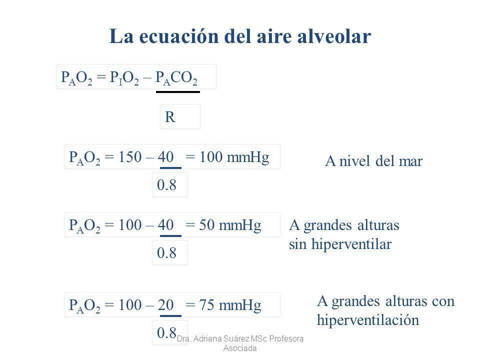 La ecuación del aire alveolar P A O 2 = P I O 2 – P A CO 2 R P A O 2 = 150 – 40 = 100 mmHg 0.8 A nivel del mar P A O 2 = 100 – 40 = 50 mmHg 0.8 A gran