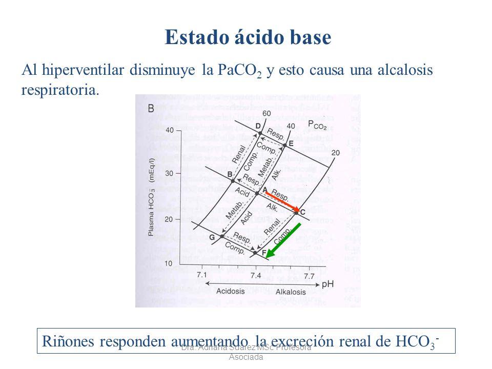 Estado ácido base Al hiperventilar disminuye la PaCO 2 y esto causa una alcalosis respiratoria. Riñones responden aumentando la excreción renal de HCO